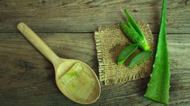 Aloe Vera for Strong Follicles